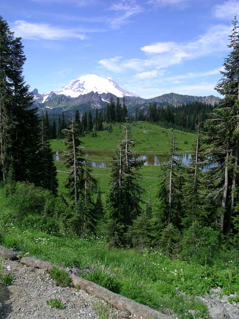 Tipsoo Lake View of Mount Rainier